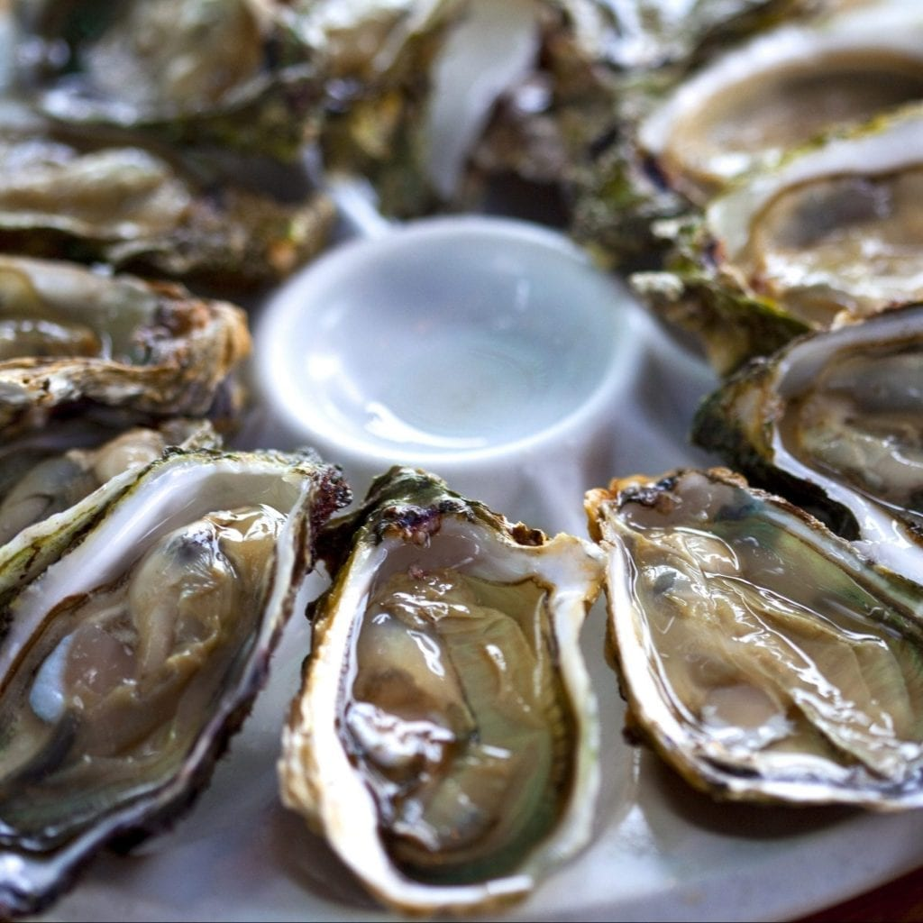 Oysters (Native or Pacific)